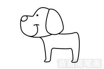 小狗简笔画图片步骤五