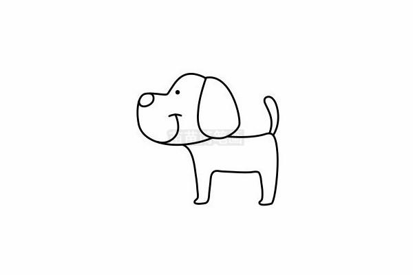 小狗简笔画图片步骤六
