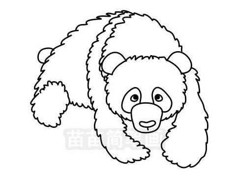 熊猫简笔画图片大全作品三