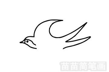 燕子简笔画图片步骤五