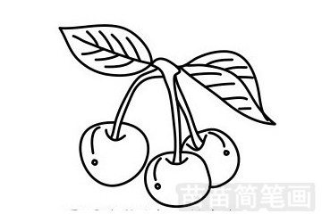 樱桃简笔画图片步骤一