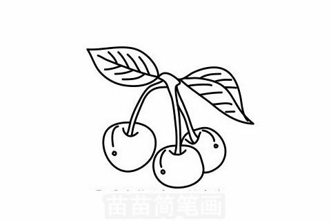 樱桃简笔画大图