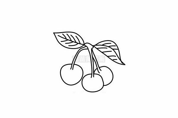 樱桃简笔画图片步骤六
