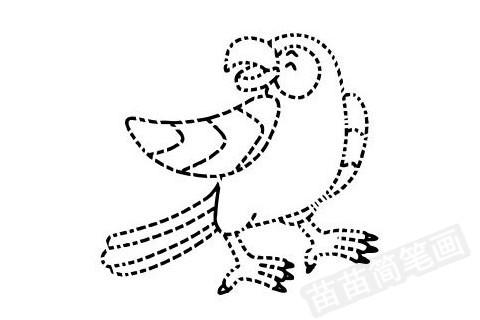 鹦鹉简笔画图片大全作品四