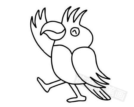 鹦鹉简笔画图片大全作品五