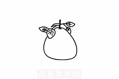 柚子简笔画大图