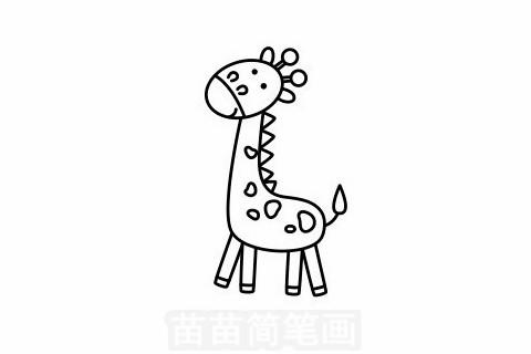 长颈鹿简笔画大图