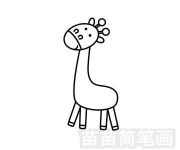 长颈鹿简笔画图片步骤五