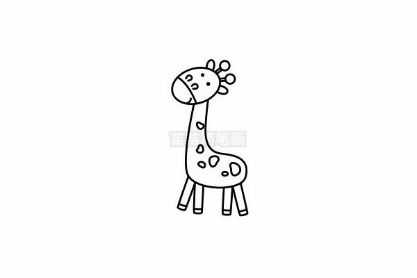 长颈鹿简笔画图片步骤六