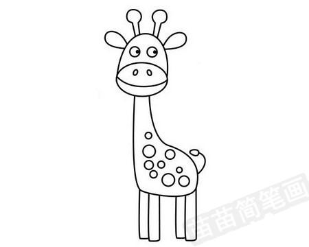 长颈鹿简笔画图片大全作品四