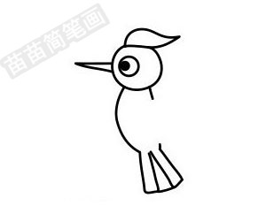 啄木鸟简笔画图片步骤四