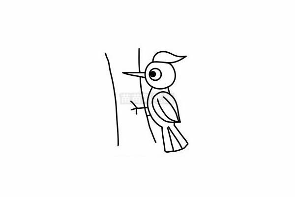 啄木鸟简笔画图片步骤六