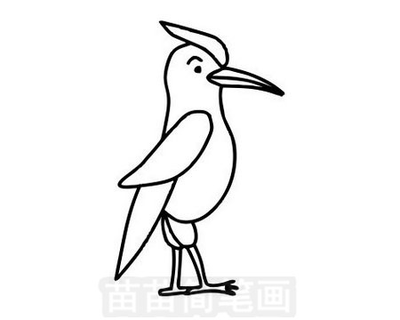 啄木鸟简笔画图片大全作品一