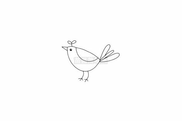 小鸟简笔画图片步骤五