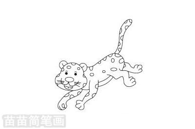 简笔画 动物简笔画 野生动物简笔画 >> 正文内容   豹子简笔画分步骤