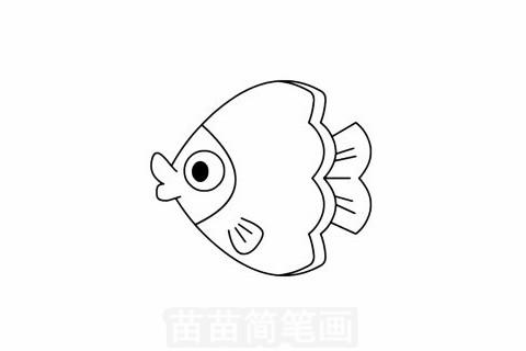 蝴蝶鱼简笔画图片大全,教程