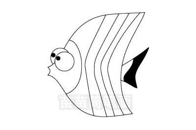 蝴蝶鱼简笔画图片大全 教程