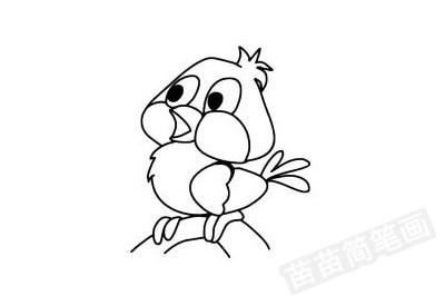 黄鹂简笔画图片大全作品四