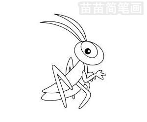 蝗虫简笔画图片步骤三