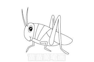蝗虫简笔画图片大全作品一