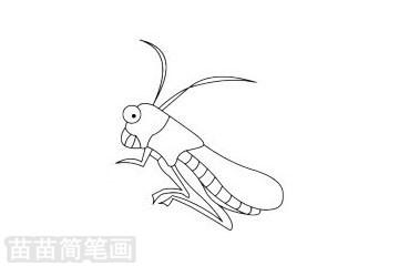 蝗虫简笔画图片大全作品二