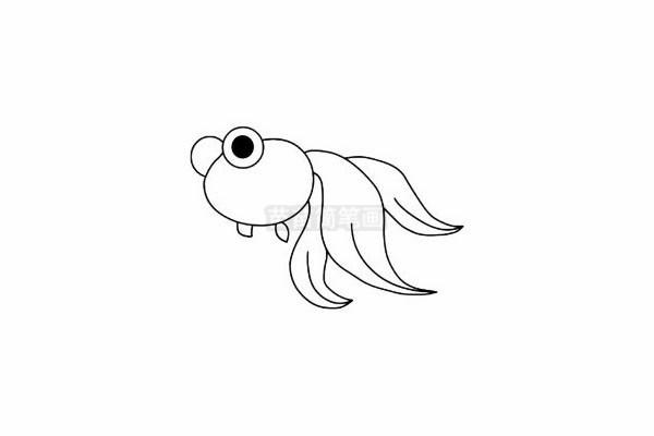 金鱼简笔画怎么画 图片大全