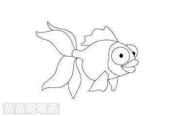 金鱼简笔画图片大全 画法图片