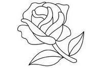 玫瑰花简笔画图片大全、教程