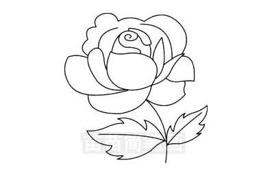 玫瑰花简笔画图片大全 教程