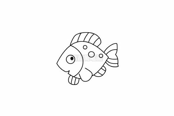 热带鱼简笔画图片步骤五
