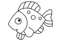 热带鱼简笔画图片大全、教程