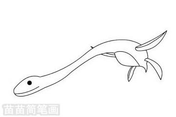 蛇颈龙简笔画图片大全作品二