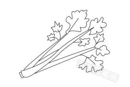 蔬菜简笔画图片大全作品五