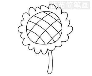 向日葵简笔画图片步骤四