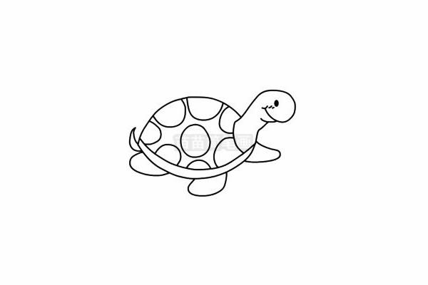 小乌龟简笔画图片大全 教程