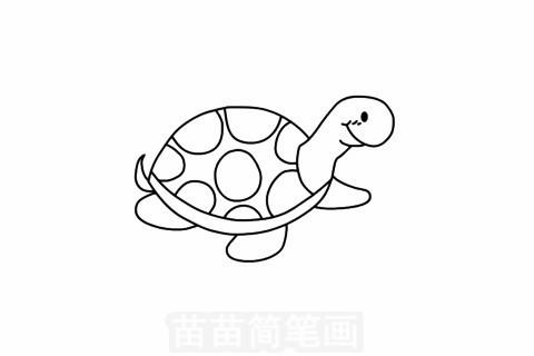 小乌龟简笔画图片大全,教程
