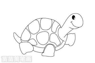 小乌龟小知识:乌龟孵出的雌雄性别由温度控制,当温度为25℃时孵化之幼龟为雄性,温度在28℃以上孵出的幼龟为雌性.