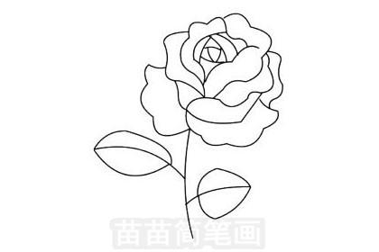 月季花小知识:月季的适应性强,耐寒、耐旱,不论地栽、盆栽均可,适用于美化庭院、装点园林、布置花坛、配植花篱、花架,月季栽培容易,可作切花,用于做花束和各种花篮,月季花朵可提取香精,并可入药.
