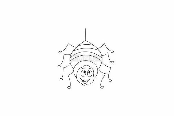 蜘蛛简笔画图片步骤四
