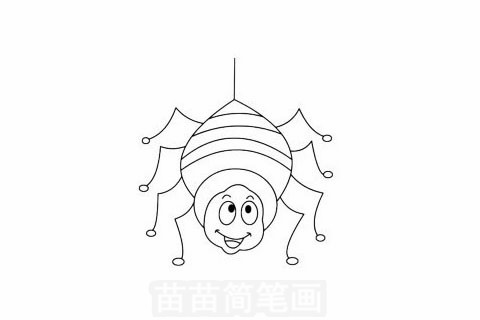 蜘蛛简笔画大图