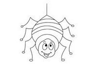 蜘蛛简笔画图片大全、画法
