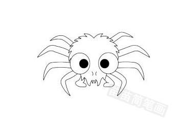 蜘蛛简笔画图片大全作品五