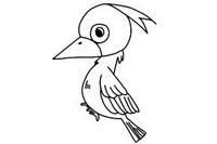 啄木鸟简笔画图片大全、教程