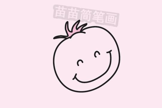番茄简笔画图片大全作品三