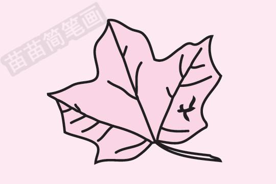 枫叶简笔画图片大全 教程