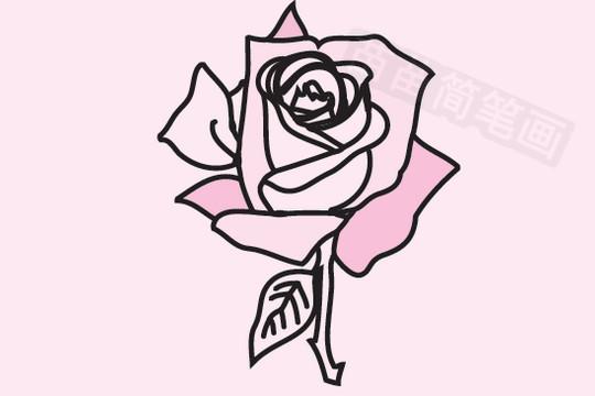 玫瑰简笔画图片大全作品五 玫瑰小知识:玫瑰花的作用及功效:性质温和、男女皆宜,对女生的内分泌很好,对去斑有一定效果,玫瑰为直立灌木,高可达2米;茎粗壮,丛生;小枝密被绒毛,并有针刺和腺毛,有直立或弯曲、淡黄色的皮刺,皮刺外被绒毛。玫瑰花的种植比较繁琐,但是玫瑰花有着非常好的寓意,一株培育的玫瑰花,送给爱人是非常好的礼物,如果想从种子开始培育玫瑰花,这个时间会很漫长,却会有很多惊喜,如果喜欢,不妨尝试一下,玫瑰花和藏红花同用可以养颜活血,调节内分泌,有一定的美容祛斑功效。现在你是不是更加了解玫瑰了! 苗