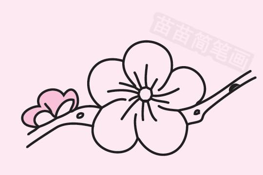 梅花小知识:梅花不喜大肥,当新梢长到约5厘米时,可施一次稀薄的麻酱水,促使枝条生长健壮,梅花的花单生或有时2朵同生于1芽内,直径2-2.5厘米,香味浓,先于叶开放;花梗短,长约1-3毫米,常无毛;花萼通常红褐色,但有些品种的花萼为绿色或绿紫色;萼筒宽钟形,