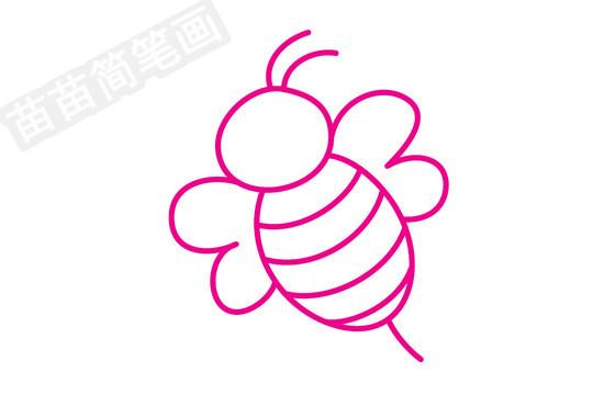 蜜蜂简笔画图片步骤四