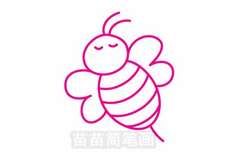 蜜蜂简笔画大图