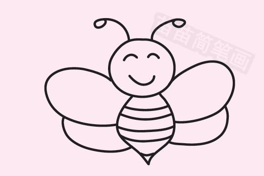 蜜蜂简笔画图片大全作品五